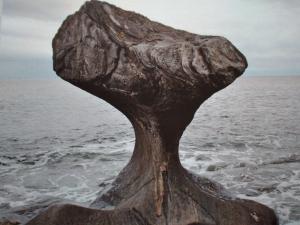 Mushroom Stone wonders
